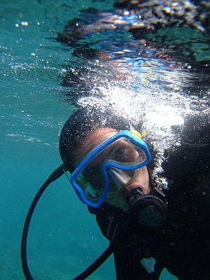 echar un vistazo bajo la superficie - Buceo en Tenerife