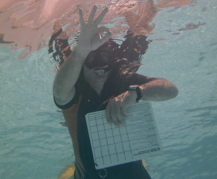 PADI IDC Pass or no Pass