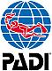 logo padi small