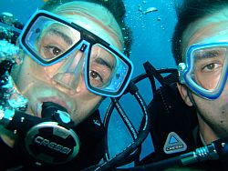 Offers Dive Centre ATLANTIK - Tenerife
