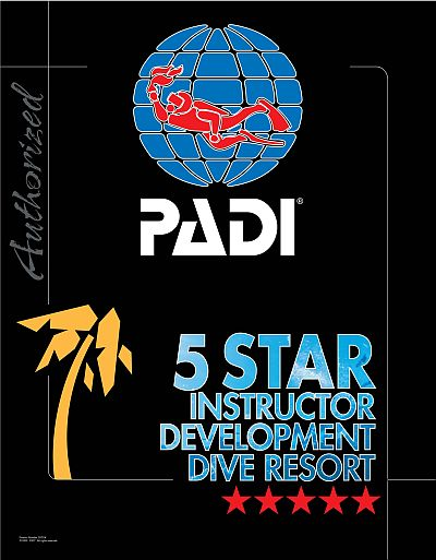logo padi gold palm 5star idc