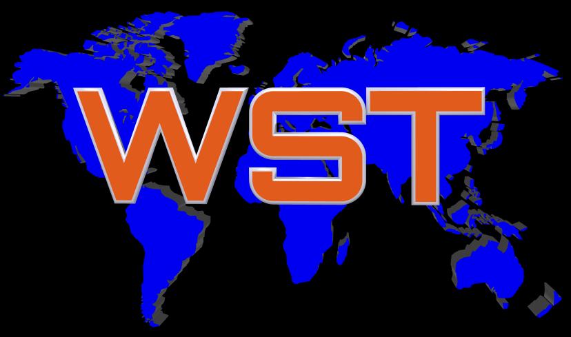 Webmaster Service Tenerife